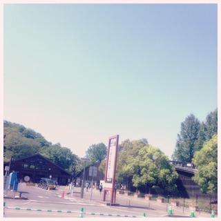 image-33fe6.jpeg