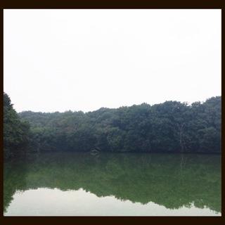 image-8a592.jpg